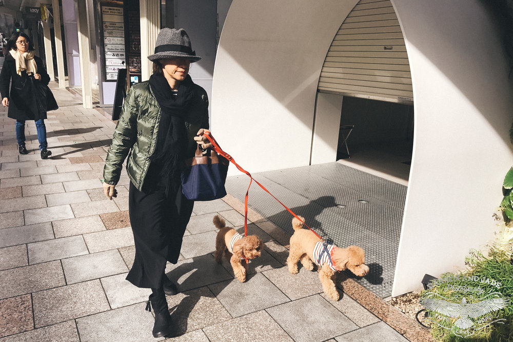 Japan Travel Blog (42 of 65).jpg