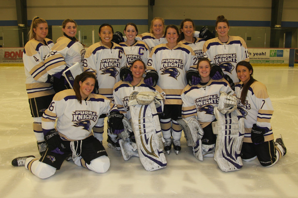Erin Dwyer '13, standing, fourth from left, was captain of the St. Michael's College Purple Knights women's hockey team. She has been drafted to play for the Boston Blades professional women's hockey league.