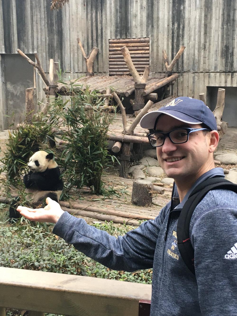 Panda - 1 (1).jpg