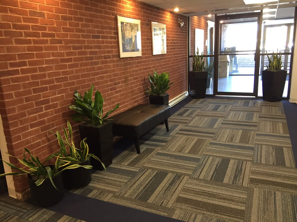 Lobby with new plants, 3-14-16.jpg