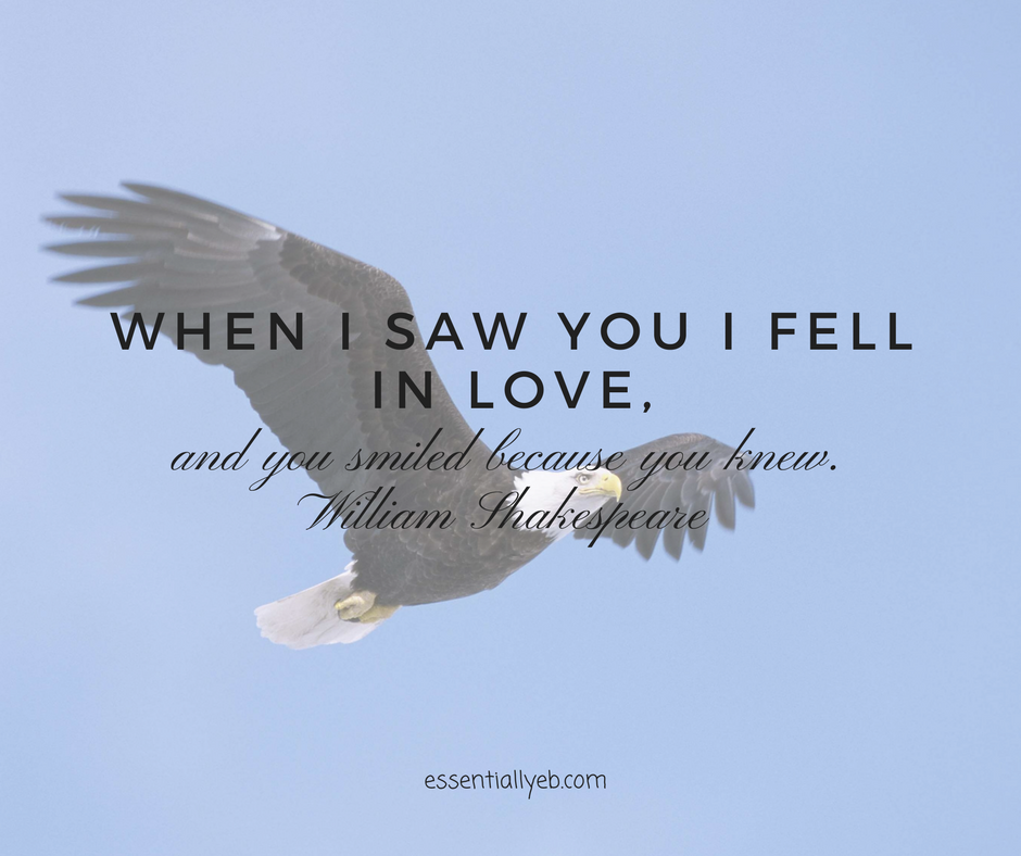 When I saw you I fell in Love.png