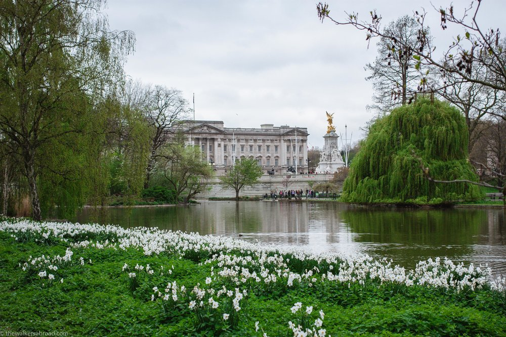 Buckingham Palace from St. James' Park.