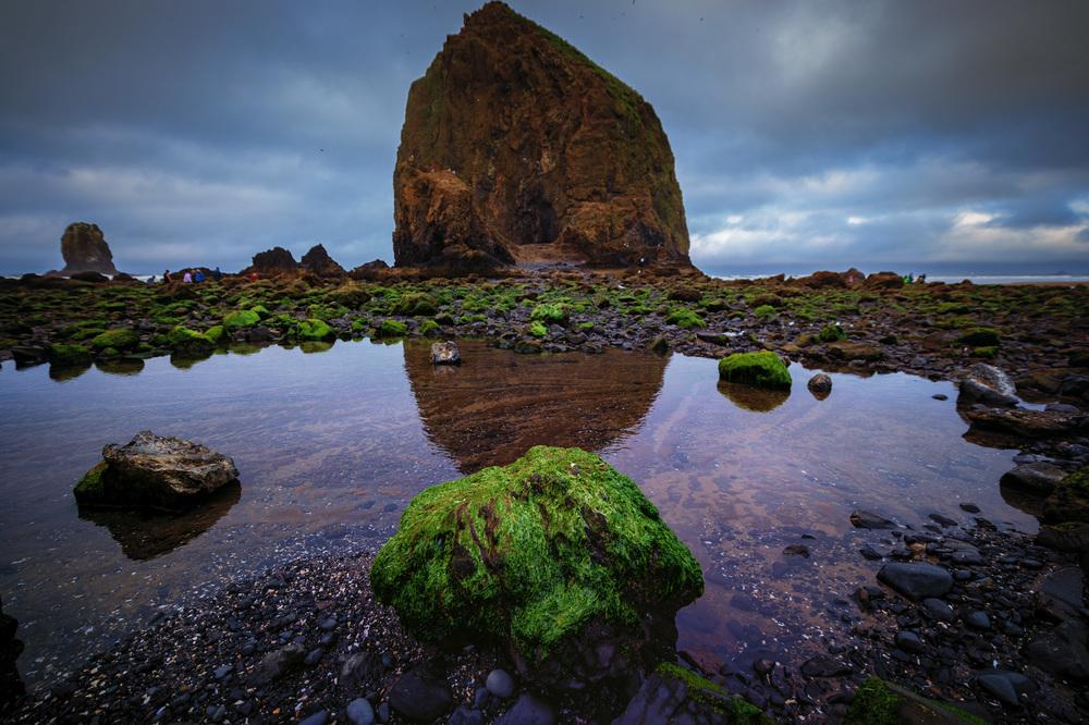 Haystack Rock. Nikon D4S, 14-24mm @ 15mm.1/800 @ 3.5, ISO 200.