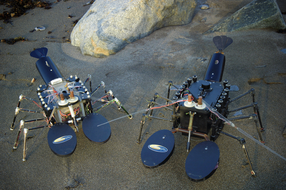 NAHANT, Mass.  - The biomimetic underwater robot, Robolobster, at Northeastern University's Marine Science Center. Biomimetic robots take advantage of capabilities proven in animals for dealing with real-world environments.