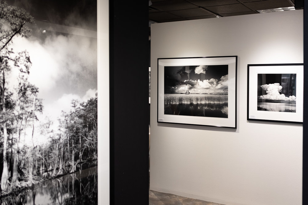 Clyde's Venice Gallery and Studio is open Tuesday - Friday, 10 am to 4:30 pm . His black and white photography of the Florida landscape is inspiring me to get out and explore my new home state.