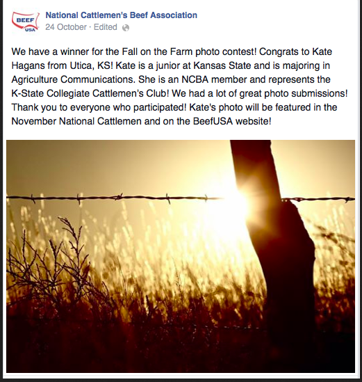 National Photo Contest Winner | NCBA