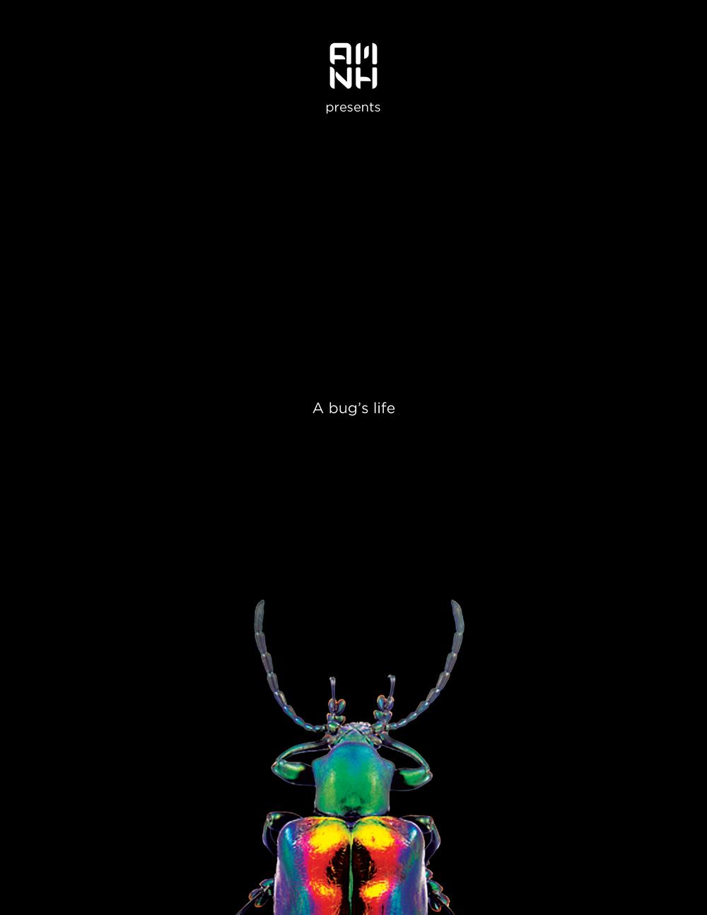 amnh_posters_v1_bugs2.jpg