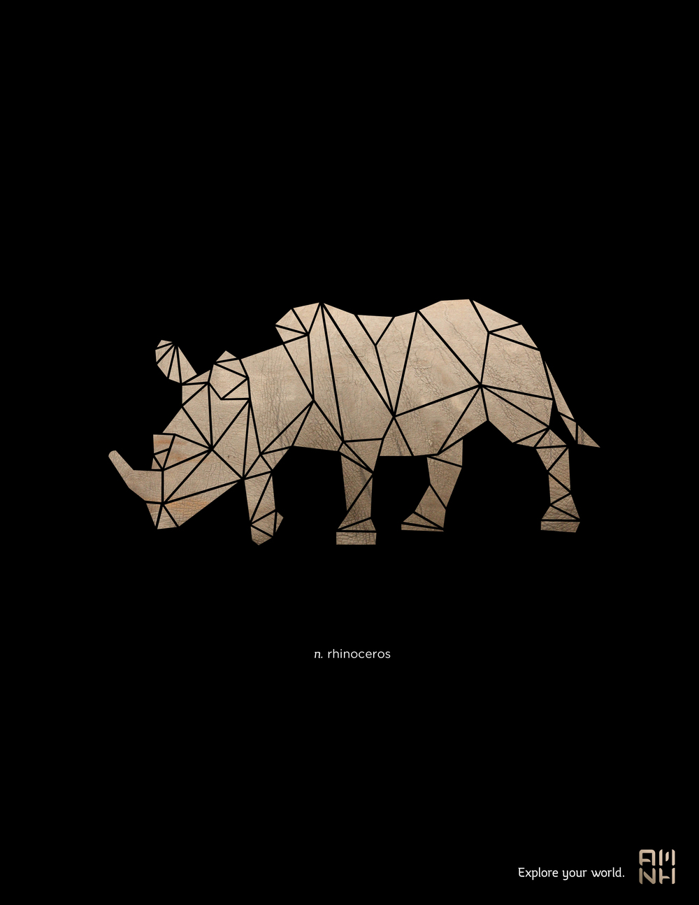 amnh_posters_v3_rhino.jpg