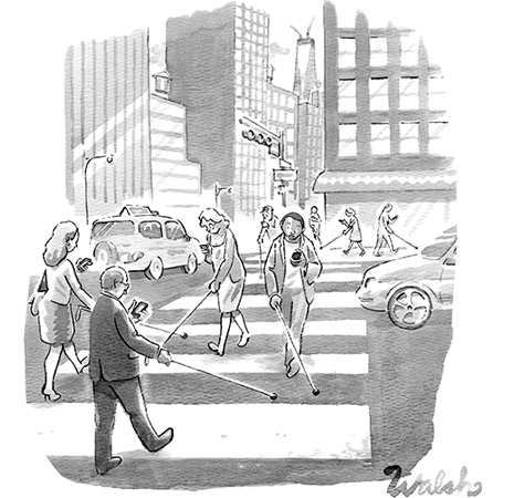 liam walsh cartoon for new yorker via courtney khail