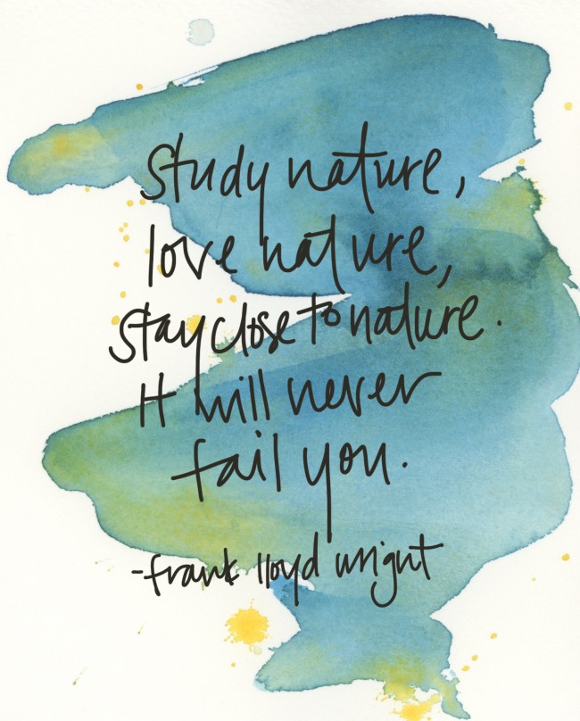 study nature by frank lloyd wright via courtney khail