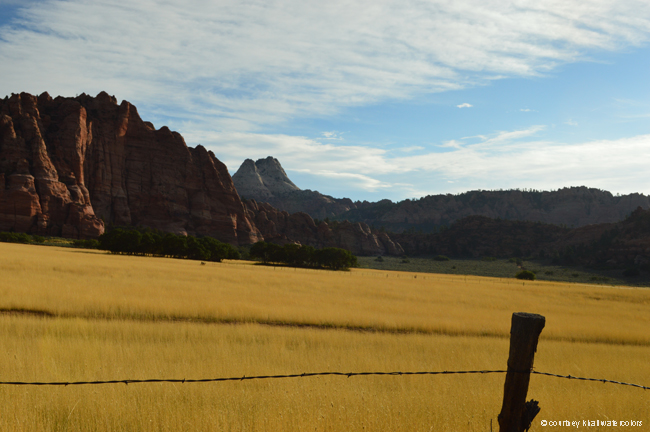 road trip utah zion national park _courtneykhail