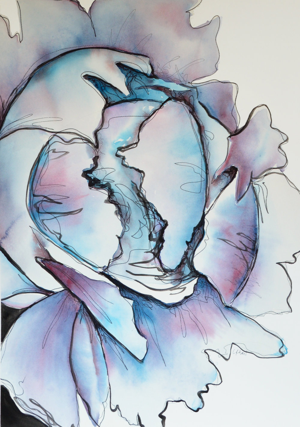 Courtney Khail | Untitled, Blue Poppy | Atlanta watercolor artist