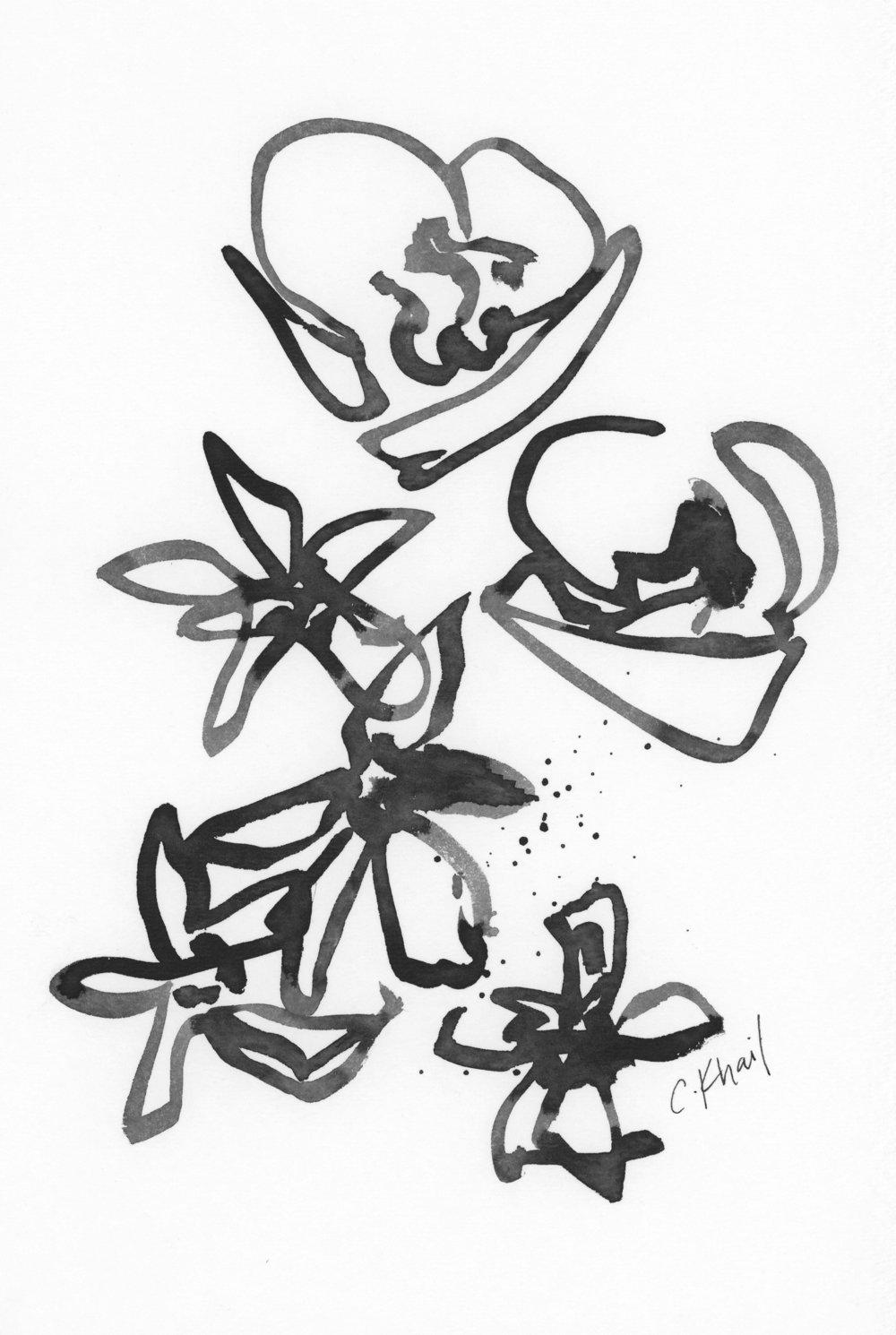 Courtney Khail | the black and white series no 5 | Atlanta artist