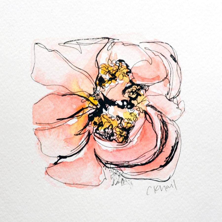 Botanical Study #4 (Blush Peony) web.jpg