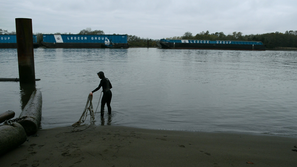 North Arm, Fraser River | video still | 2016