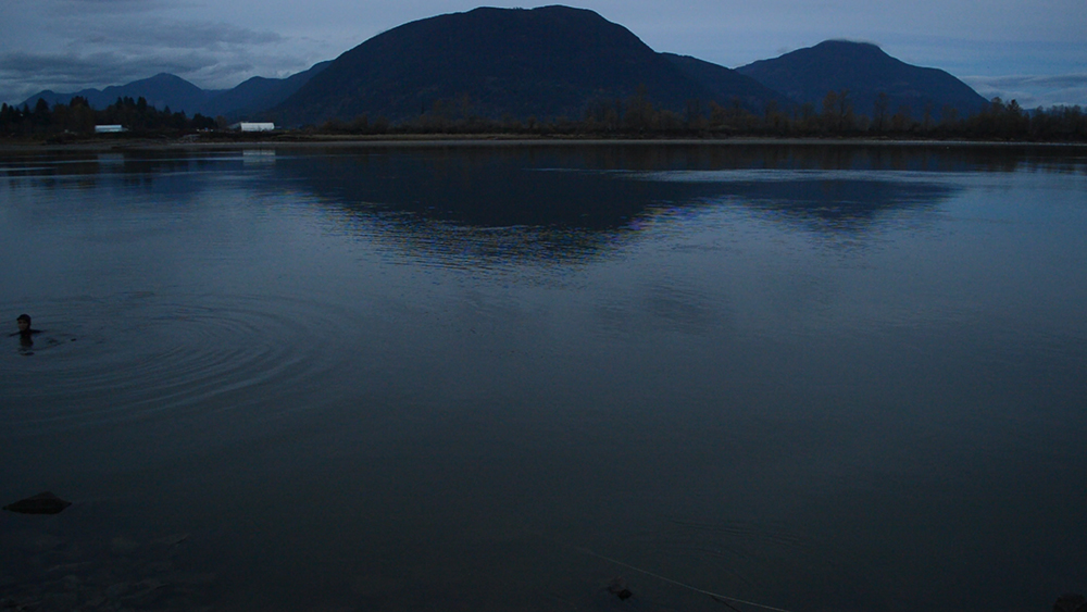 Matsqui, Fraser River | video still | 2015