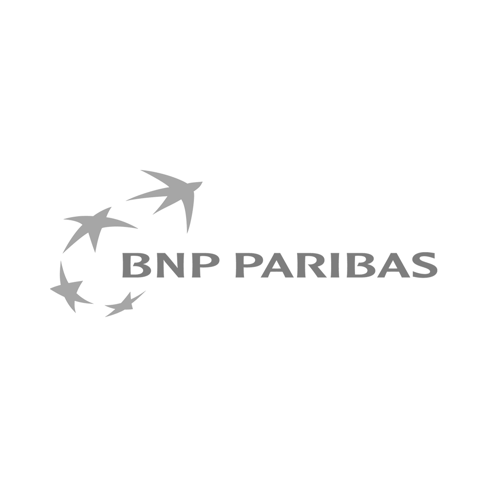 bnp.jpg