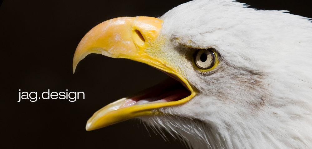 jag_webfbcover_eagle.jpg