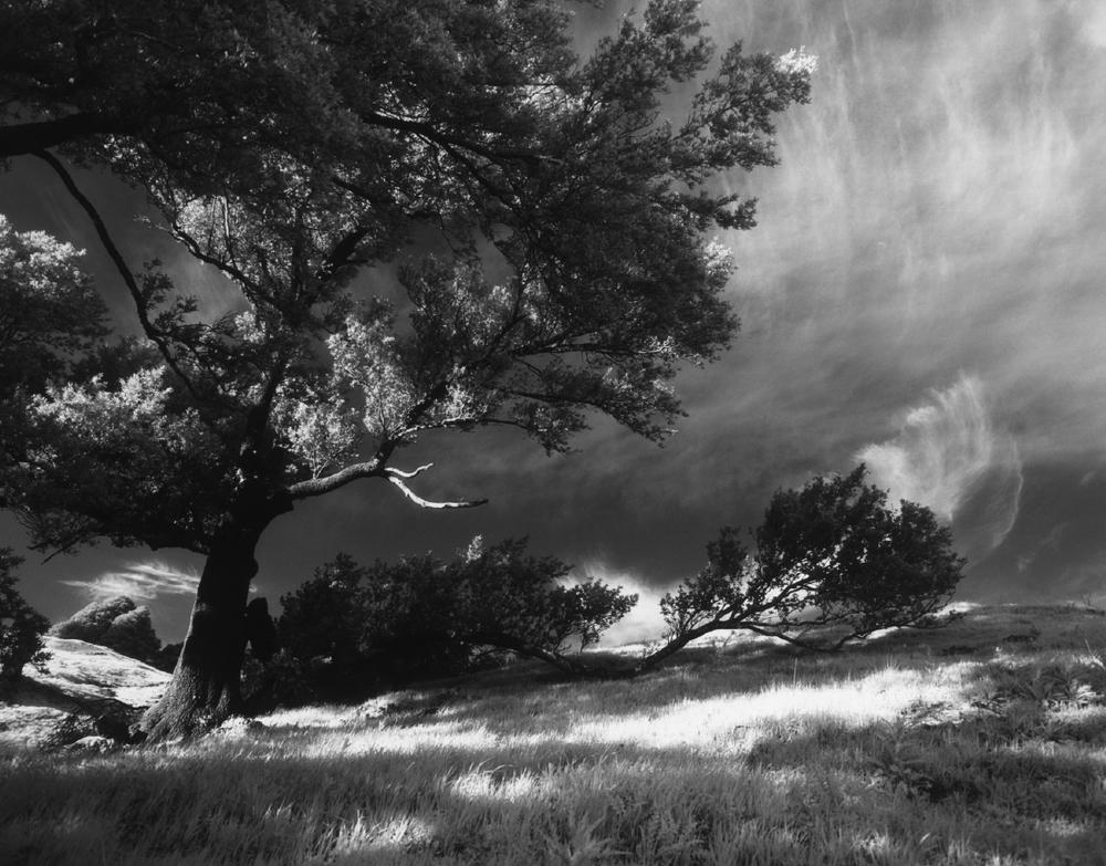 california_05_45