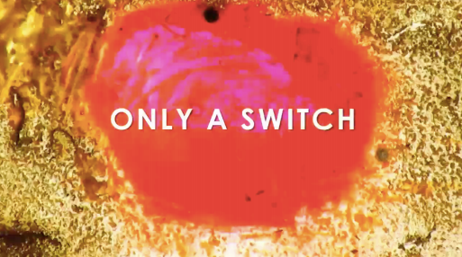 onlya_switch.png