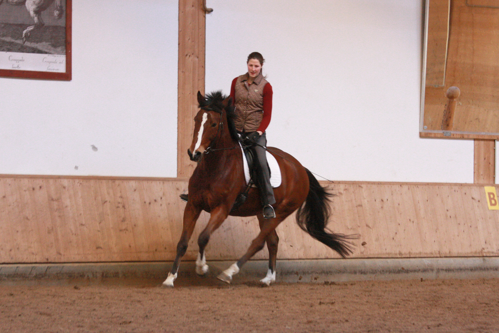 Lucy Ketcher - Riding Instructor