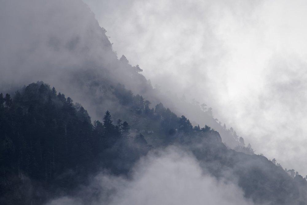 Breathwork - An active meditationthrough conscious breathing.