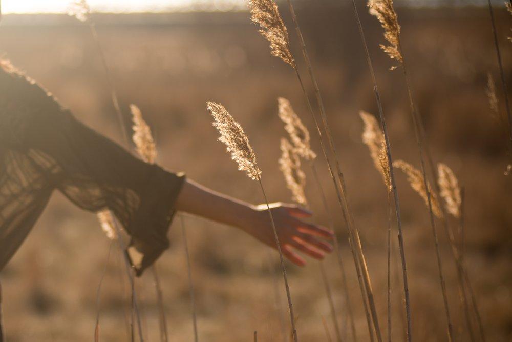 Reiki - A sacred meditation through energy.