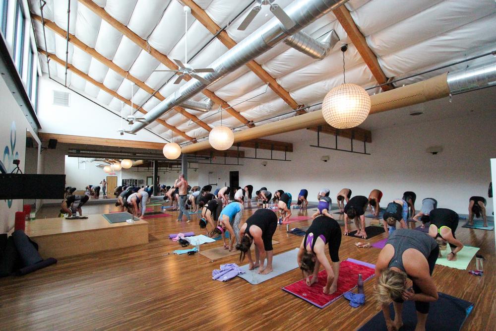 Vet Day Yoga-4.jpg