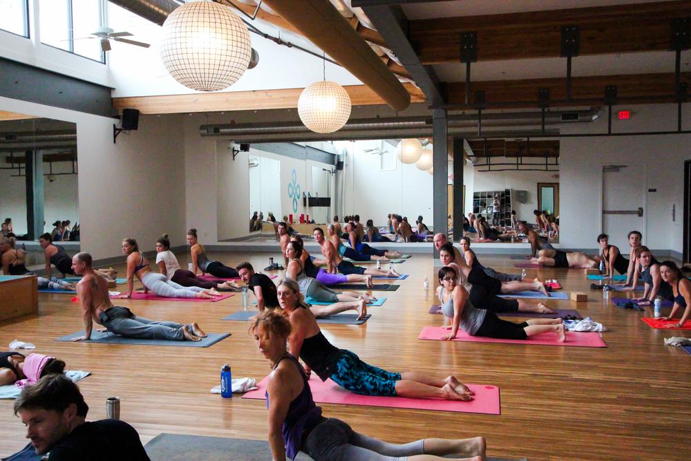 Vet Day Yoga-14.jpg