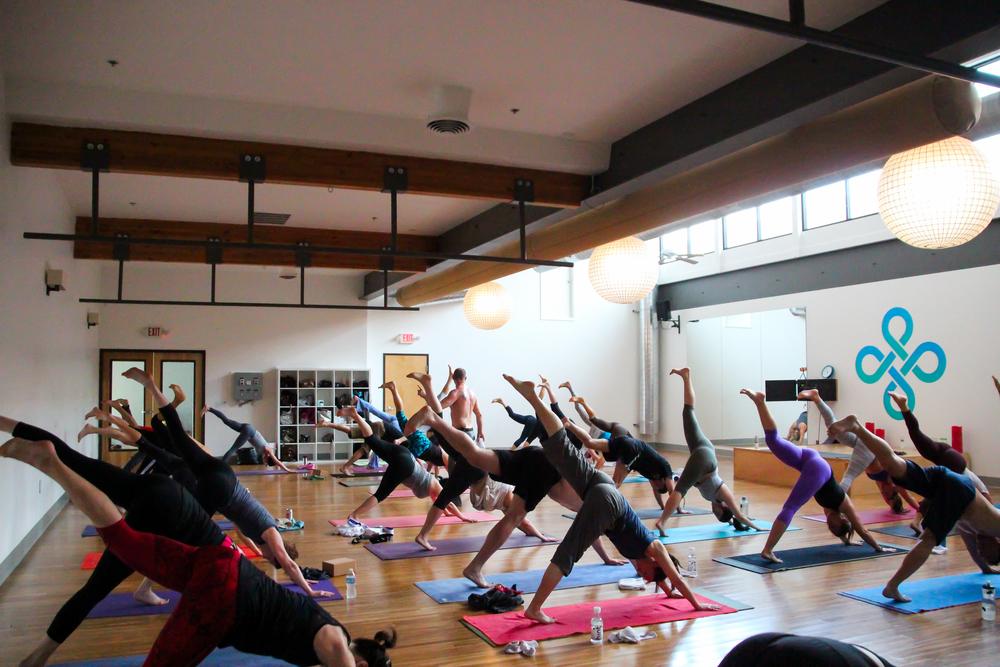 Vet Day Yoga-25.jpg