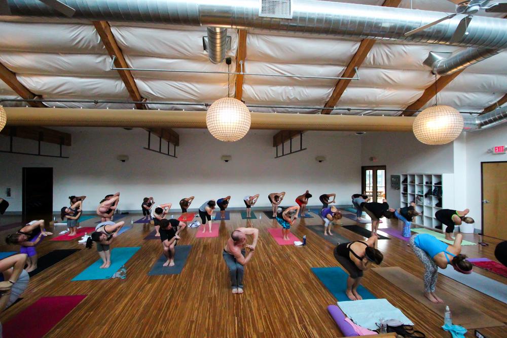 Vet Day Yoga-2.jpg