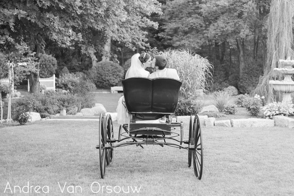 carriage_kiss.jpg