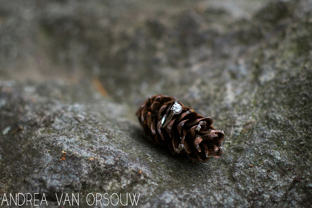 engagement_ring_pinecone_outdoors.jpg