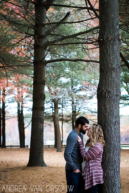 woods_pine_trees_engagement_Session_ct_photographer.jpg