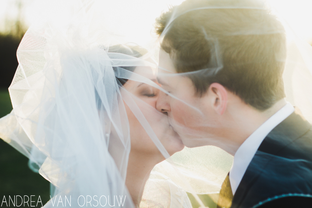 kiss_in_veil_april_wedding_golden_hour_connecticut_photographer.jpg