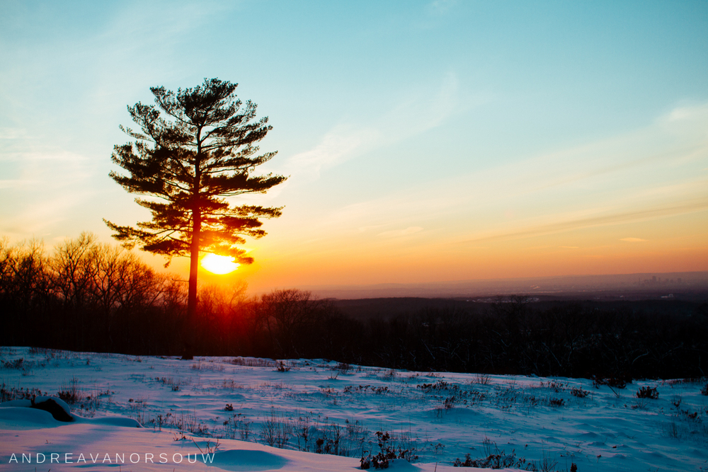 hartford_view_case_mountain_hike_connecticut_wedding_photographer.jpg