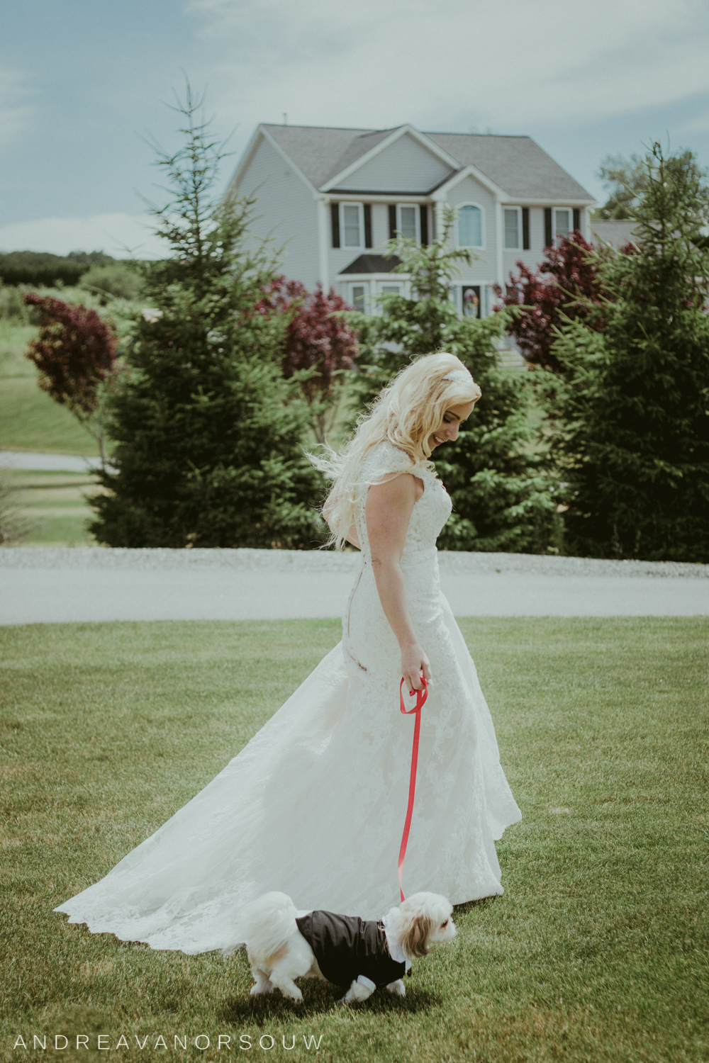 brides_dog_puppy_leash_kirkbrae_country_club_bride_groom_wedding_rhode_island_lincoln_natural_photography_connecticut_new_england_photographer.jpg