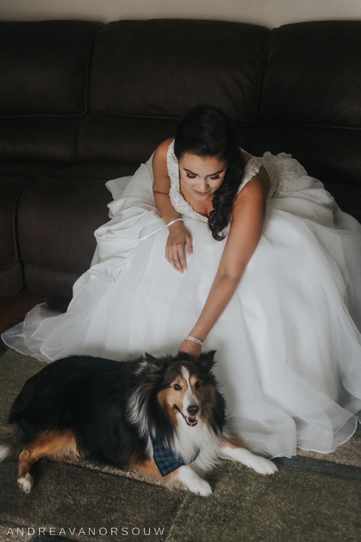 pawtucket_country_club_wedding_outdoors_rhode_island_new_england_connecticut_summer_Wedding_natural_photographer_photography_bride_puppy_dog.jpg