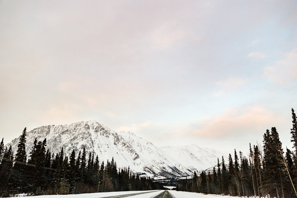 denali-fairbanks-anchorage-elopement-photographer-alaska.jpg