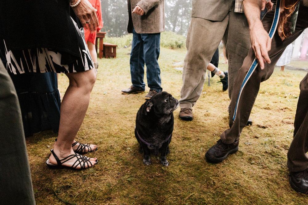 5. fun-wedding-photographer-andrea-van-orsouw-photography-indie-new-hampshire-fun-adventurous-dublin-21.jpg