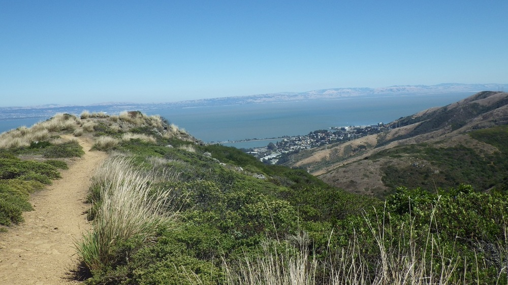 View from the top of San Bruno Mountain Ridge Trail. 7 Mile House is located just 5 minutes away.