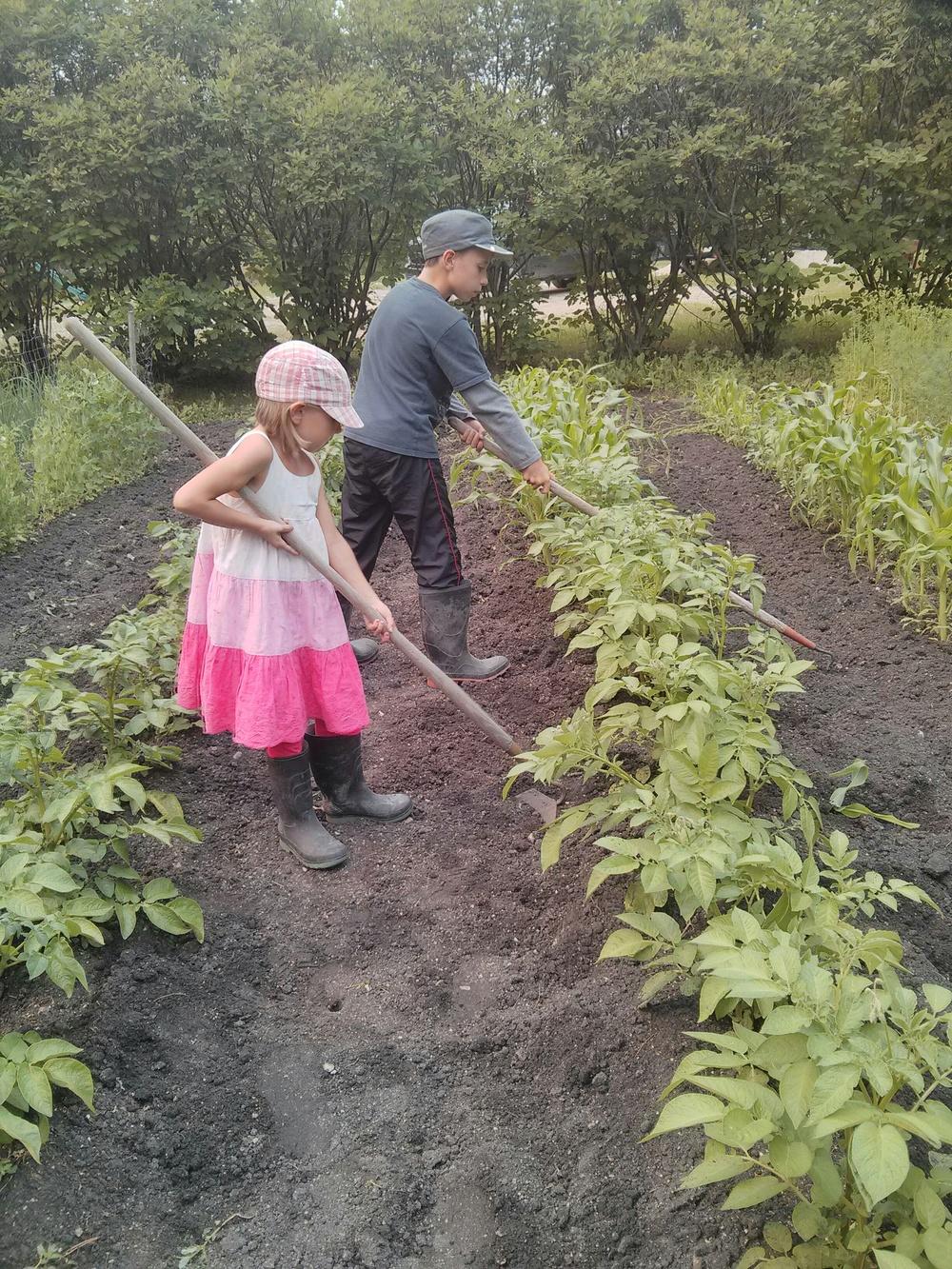 Doing their share in the Barkman garden