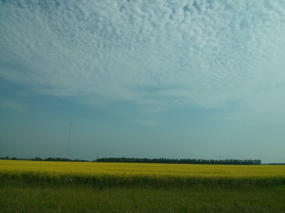 Manitoba's summer beauty