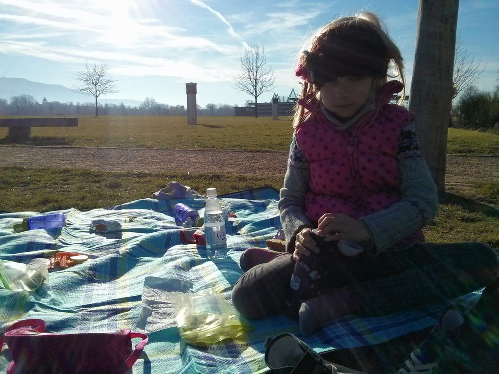 Picnic at a park with friends on a beautiful December day