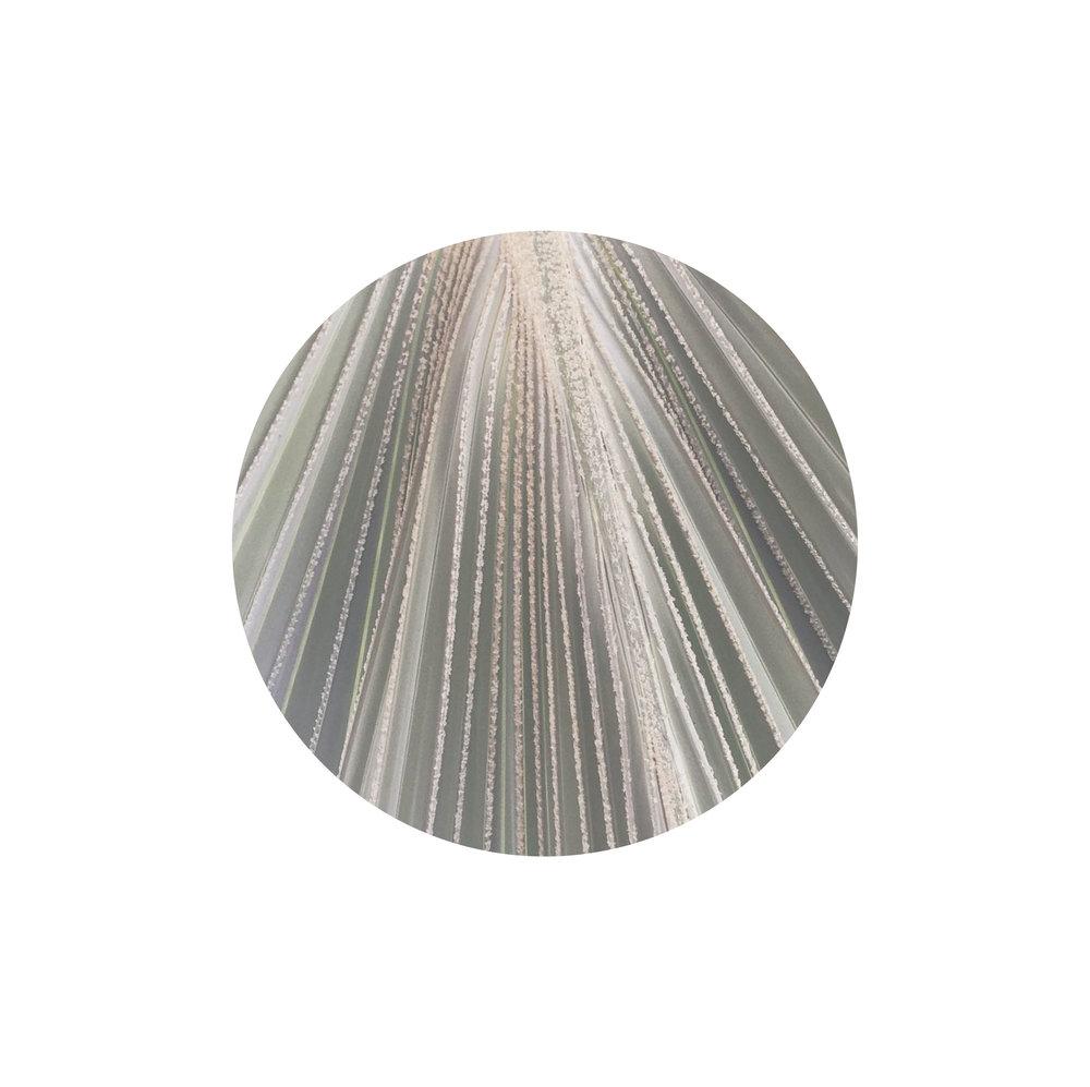 Filamentos-texturas-16.jpg