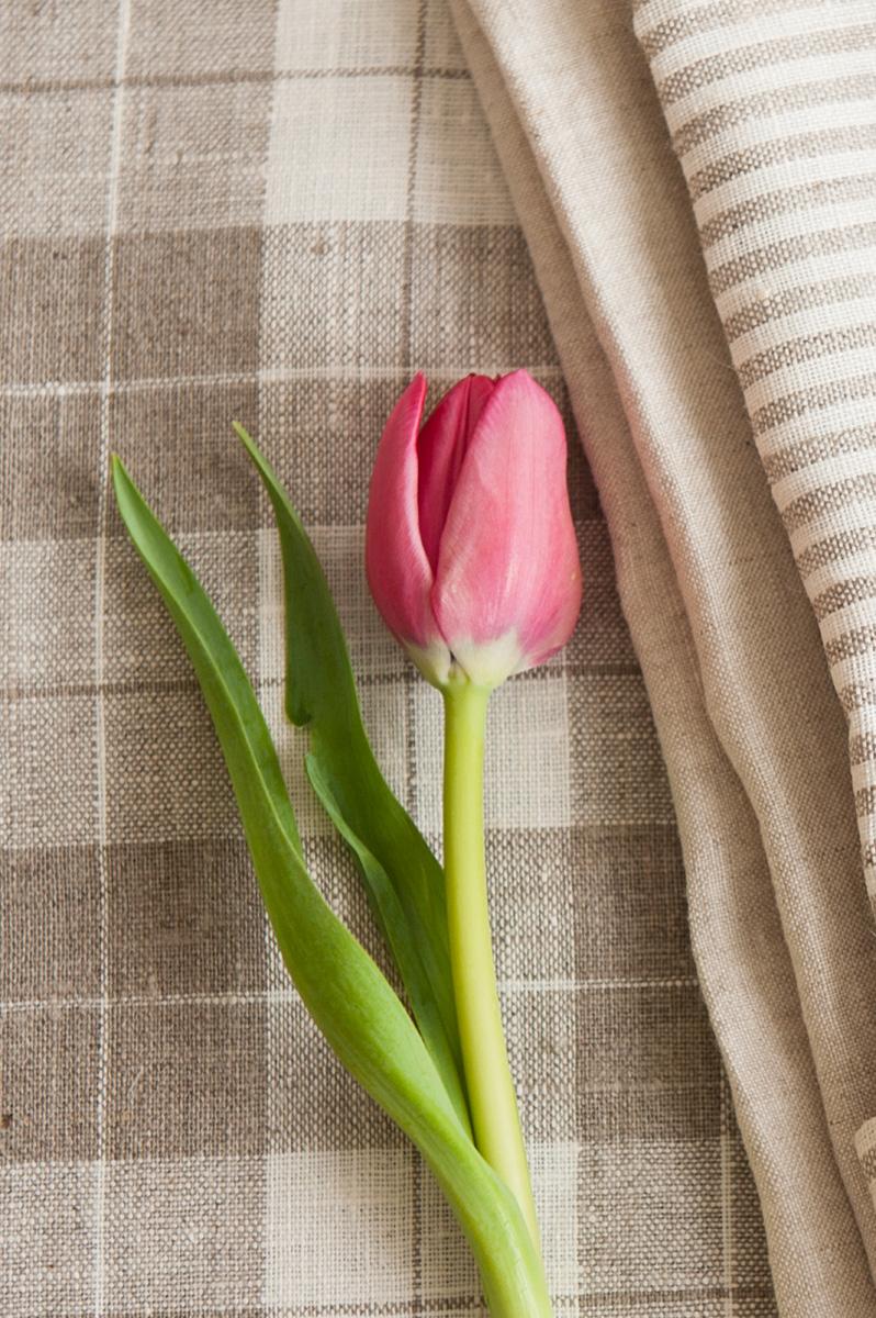 tulip_with_linen_napkin