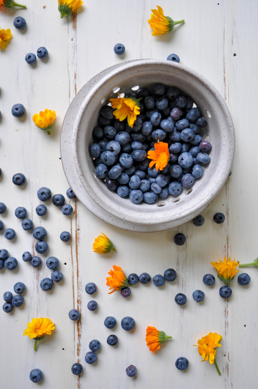 blueberries-berry-bowl-flowers