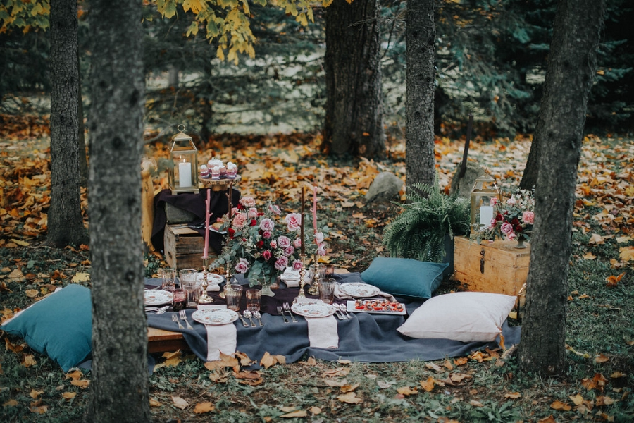 A Fancy Woodland Picnic