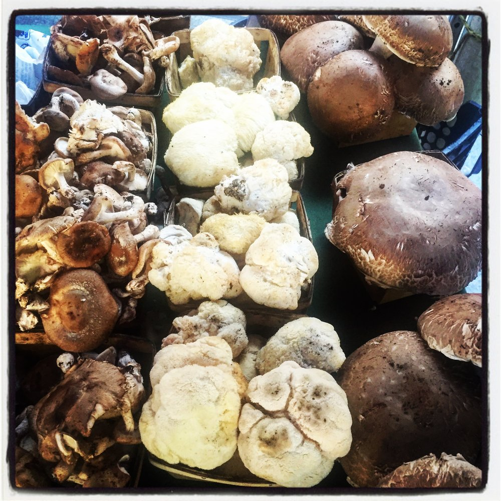 Shiitake, Lion's Mane and Crimini Mushrooms