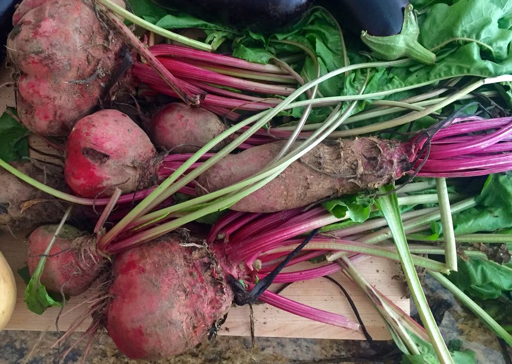 Beets just pulled from th garden.